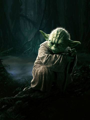 Star Wars - Magister Yoda