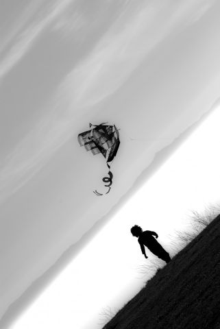 child and the kite