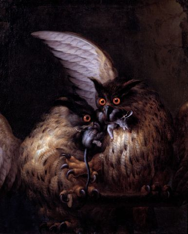 Two Owls Fighting over a Rat-Hans Georg