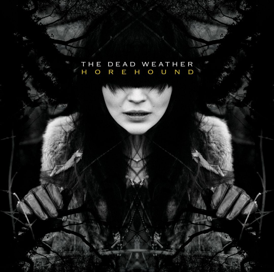 Постер The Dead Weather - Мёртвая погода