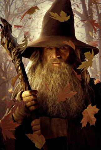 Hobbit - Gandalf the Gray