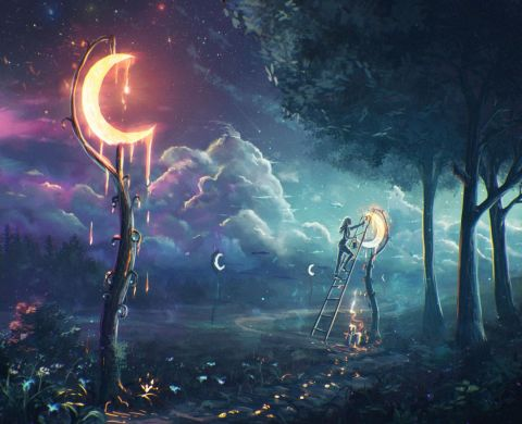 Moon Dreamer Forest