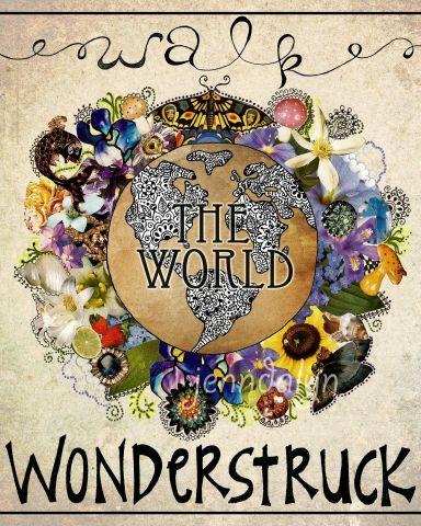War wonderstruck The world