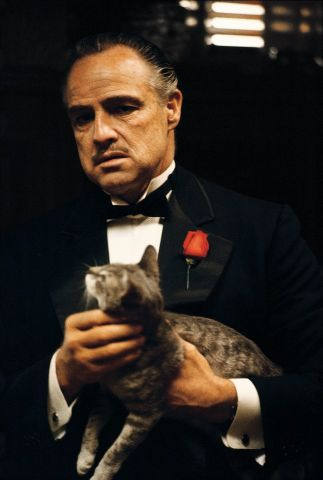 Marlon Brando (The Godfather)