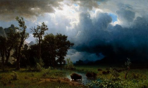Bison Trail - Albert Bierstadt